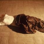 1984 l'oblio affligge 2